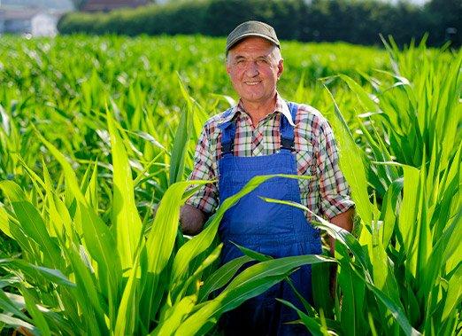 Realisations Pour Les Professionnels Agriculteurs